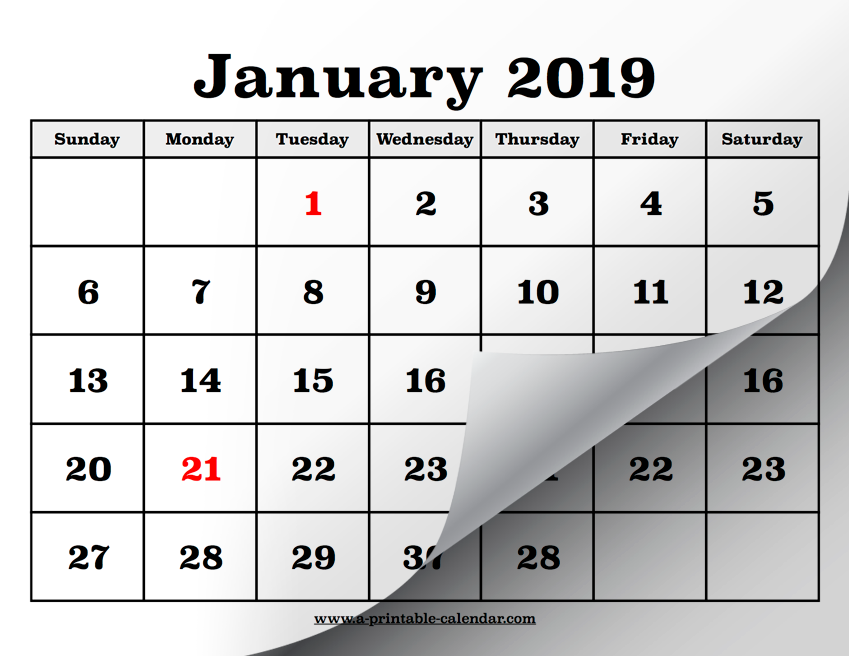 Printable Calendar Pages for 2019